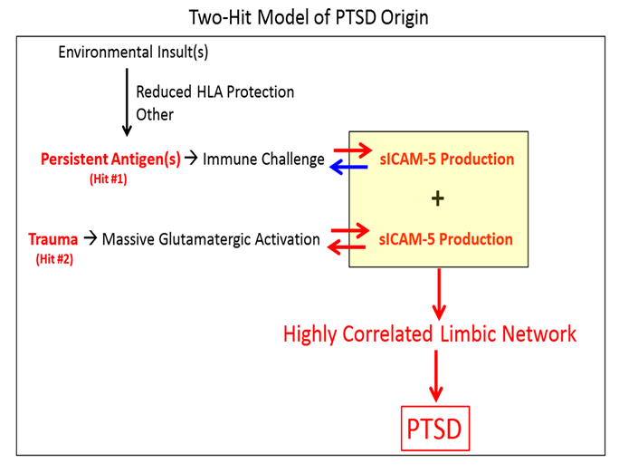 When Trauma Underlies Challenging >> A Two Hit Model Of The Biological Origin Of Posttraumatic Stress
